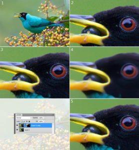 usuwanie szumu w fotografii