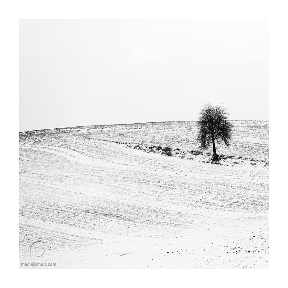foto_zima